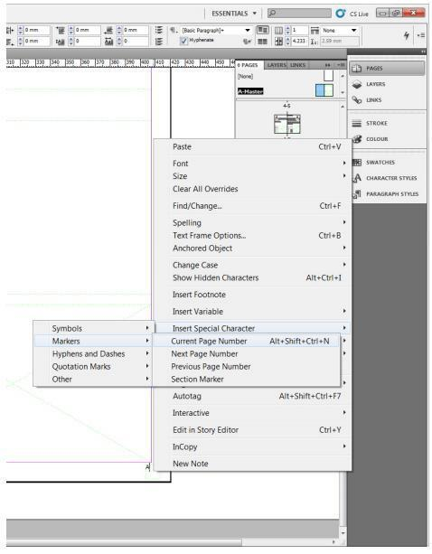 how to use indesign assignment